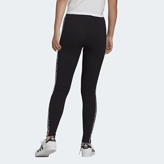 Picture of TIGHTS