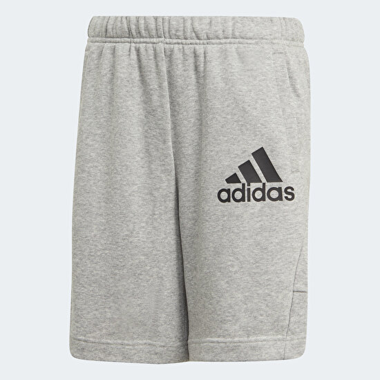 Picture of Badge of Sport Shorts
