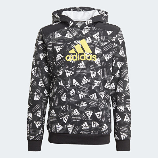 Picture of Logo Hoodie