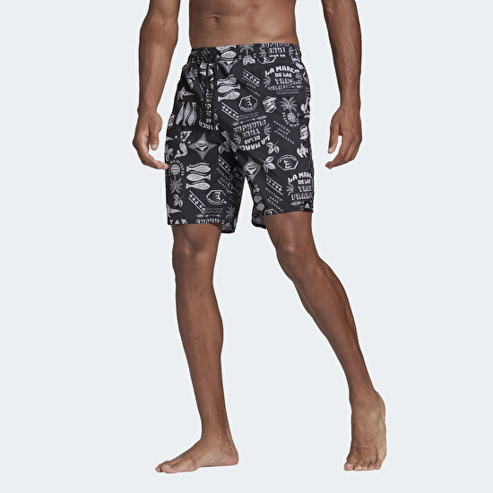 Picture of Classic-Length Graphic Swim Shorts
