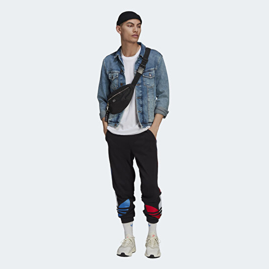 Picture of Adicolor Sweat Pants