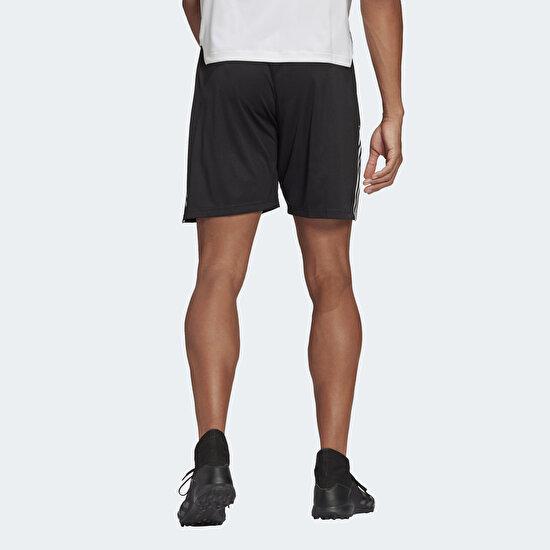 Picture of Tiro Training Shorts